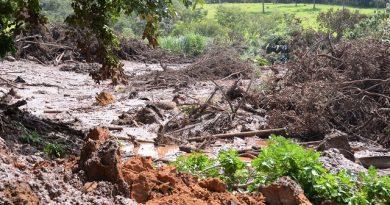 Após o rompimento de barragem, Brumadinho pode ter surtos de dengue, febre amarela e outras doenças