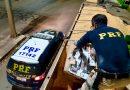PRF apreende mais de 300 mil maços de cigarros escondidos em carga de milho na BR-285