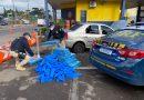 Polícia Rodoviária Federal apreende 300 quilos de maconha na Serra Gaúcha